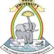 Gulu University Logo