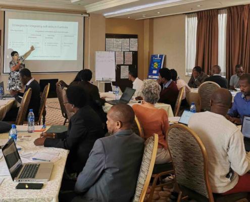 TEA-LP curriculum development workshop Addis Ababa