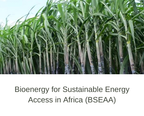 Bioenergy for Energy Access in Africa