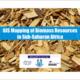 GIS Mapping Biomass Sub-Saharan Africa Webinar